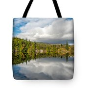 Lake Bodgynydd Tote Bag