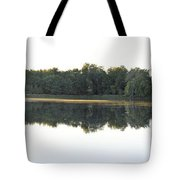 Lake Considine Tote Bag