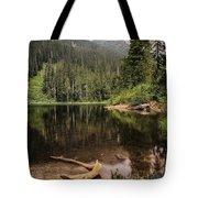 Lake Elizabeth Tote Bag