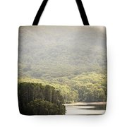 Lake Forest Tote Bag