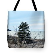 Lake Huron Landscape Tote Bag