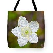 Lake Huron Wildflower Tote Bag