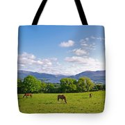 Lake Killarney From Aghadoe Hill County Kerry Tote Bag