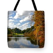 Lake Lancaster Tote Bag by Denise Mazzocco