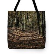 Lake Lansing Walk Tote Bag