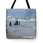 Lake Michigan Green Tote Bag