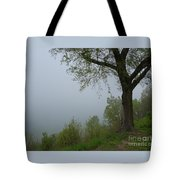 Lake Michigan Obscured Tote Bag