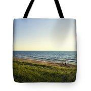 Lake Michigan Shoreline 01 Tote Bag