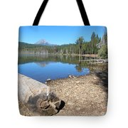 Lake Of The Woods 6 Tote Bag