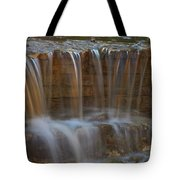 Lake Park Waterfall Tote Bag