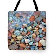 Lake Superior Stones 3 Tote Bag