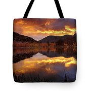 Lake View 1 Tote Bag