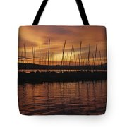Lake Washington With Mount Rainier And Marina Tote Bag