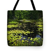 Lake With Lily Pads Tote Bag