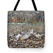 Lakeshore Rocks 4 Tote Bag