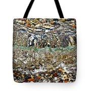 Lakeshore Rocks Tote Bag