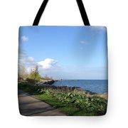Lakeside Walk Tote Bag