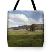 Lamar Valley No. 2 Tote Bag