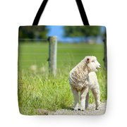 Lamb On The Farm Tote Bag