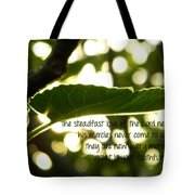 Lamentations 3 Tote Bag