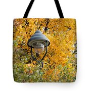 Lamp In The Autumn Leaves Tote Bag