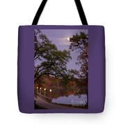 Lamplight By Moonlight Tote Bag