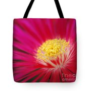 Lampranthus Abstract Tote Bag
