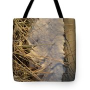 Lanceing Through The Layers  Tote Bag