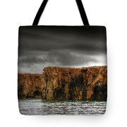 Land Of The Beginning Of Time... Tote Bag