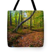 Land Of The Fairies Tote Bag