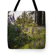 Land Of The Lupines Tote Bag