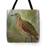 Land Rail Tote Bag