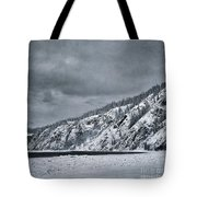 Land Shapes 13 Tote Bag by Priska Wettstein