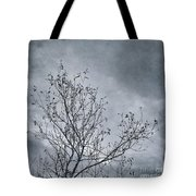 Land Shapes 16 Tote Bag by Priska Wettstein