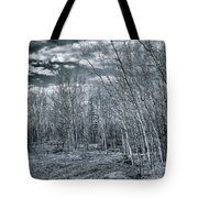 Land Shapes 22 Tote Bag by Priska Wettstein
