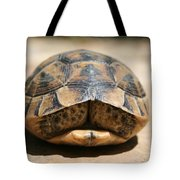 Land Turtle Hiding In Its Shell  Tote Bag