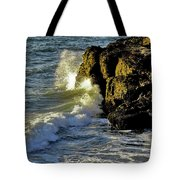 Land Versus The Sea Tote Bag