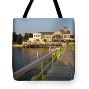 Landing In The Sun Tote Bag