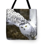Landing Of The Snowy Owl Where Are You Harry Potter Tote Bag