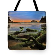 Lands End Tote Bag by Benjamin Yeager