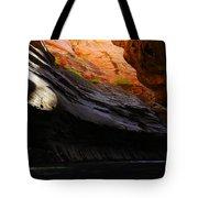 Landscape 18 Tote Bag