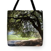 Landscape At The Jack London Ranch In The Sonoma California Wine Country 5d24583 Tote Bag