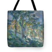 Landscape, C.1900 Tote Bag