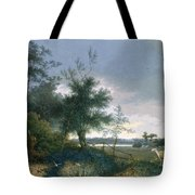 Landscape With A Fox Chasing Geese Tote Bag
