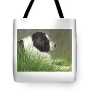 Landseer Newfoundland Dog In Grass Pets Animal Art Tote Bag