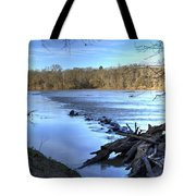 Landsford Canal-1 Tote Bag