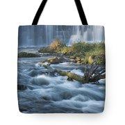 Lanesboro Dam 10 Tote Bag