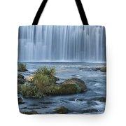 Lanesboro Dam 9 Tote Bag