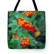 Lantana Delight Tote Bag