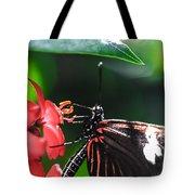 Laparus Doris Butterfly Tote Bag